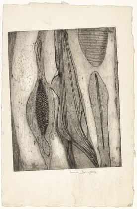 louise bourgeois. les mullesques (mollusks), state iii. (c. 1948)